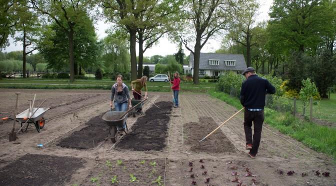 Tuinderij De Voedselketen: Aan het werk met de eenjarige gewassen.