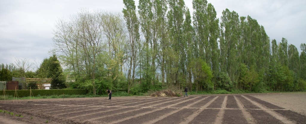 Tuinderij De Voedselketen. De grond is gereed om te zaaien.