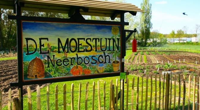 Samenwerking of overname CSA in Nijmegen