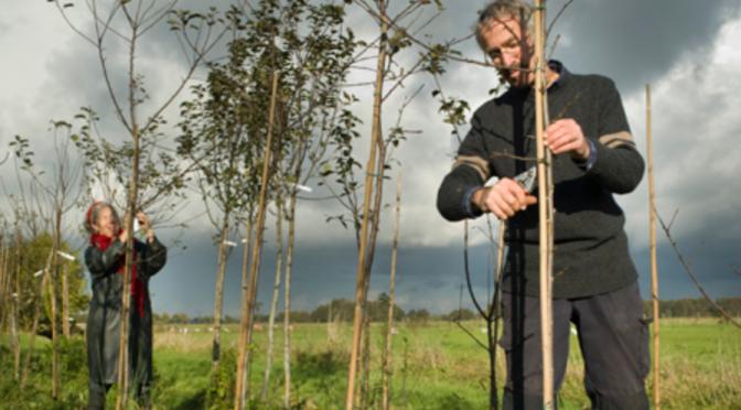 BoerenVuur in Drenthe 21 oktober