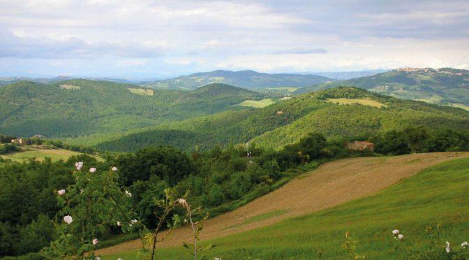 Land gezocht voor tuinderij/wijngaard