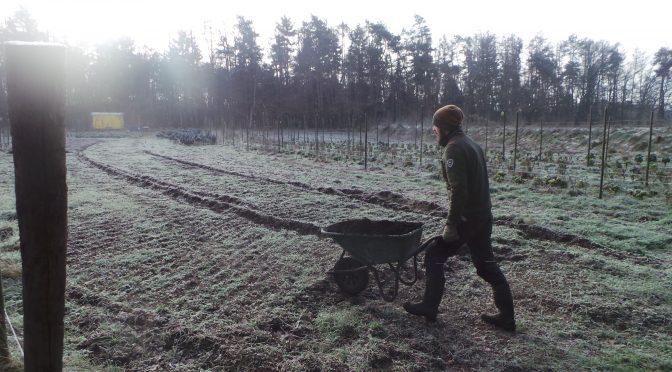 Ruimte voor agro-ecologische tuinderij gezocht