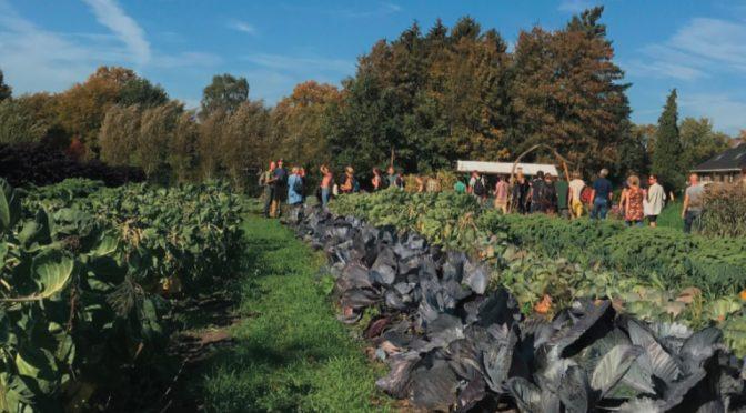 Nieuwe publicatie: Land voor agroecologie en nieuwe boeren